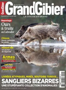 voyage-chasse-sanglier