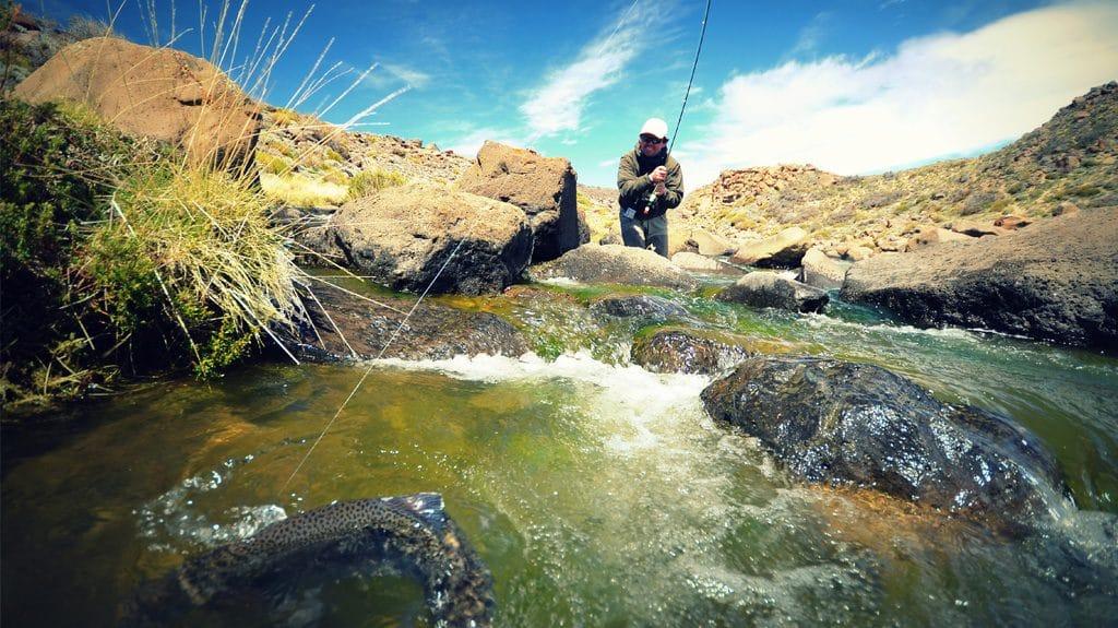 Télécharger la chanson sur le repos sur la pêche